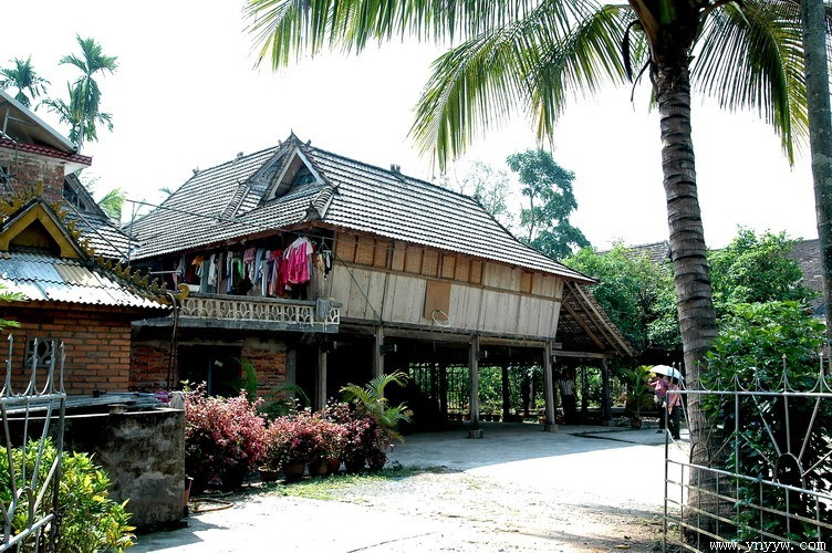 野象谷、热带花卉园、原始森林公园4天3晚游